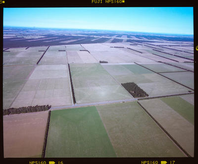 Negative: Aerial Photograph Of Fields