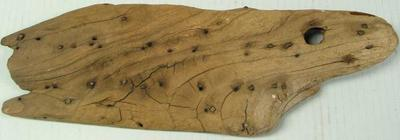 Ship Fragment: Wood