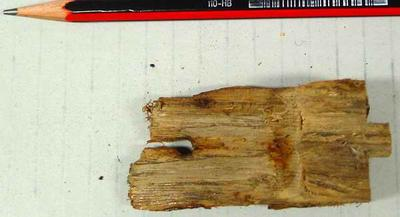 Unknown part: possibly from either shipwreck  or a sledge.