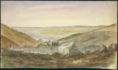 Watercolour Painting: Napier