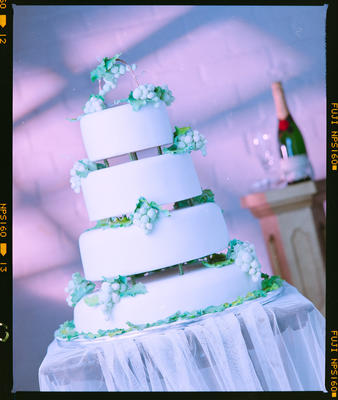 Negative: Cake With Grapes Just Desserts