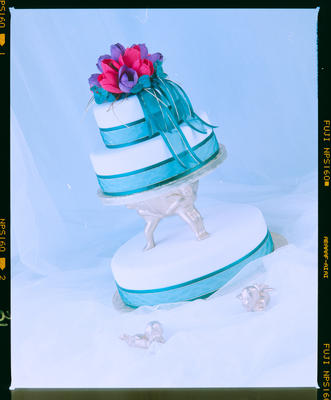 Negative: Cake With Tulips Just Desserts