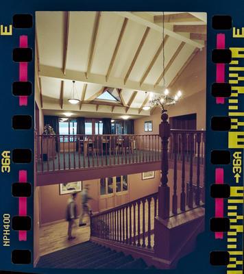 Negative: Bellbird Lodge