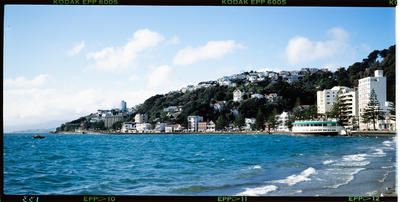 Transparency: Oriental Bay Wellington