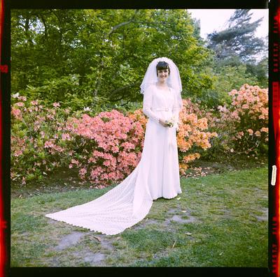 Negative: Thompson-Webster Wedding