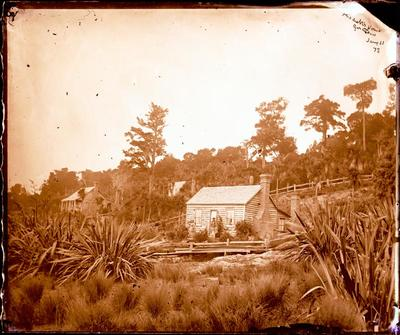 Glass Plate Negative: Mitchell's House, Geraldine