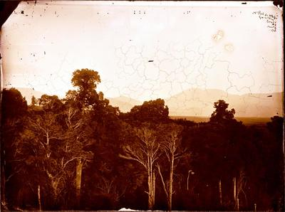 Glass Plate Negative: Mount Peel from Waitui, Geraldine