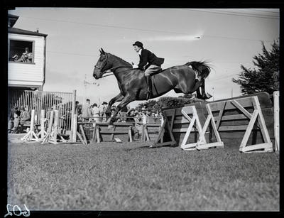 Glass negative: IHC Darfield and Christchurch Show, horse jumping