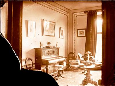 Glass Plate Negative: New Drawing Room
