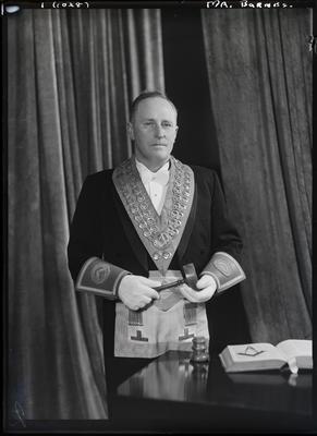 Glass negative: Mr Barnes, in lodge regalia