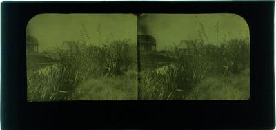 Glass Plate Positive Stereograph Slide: Avon River