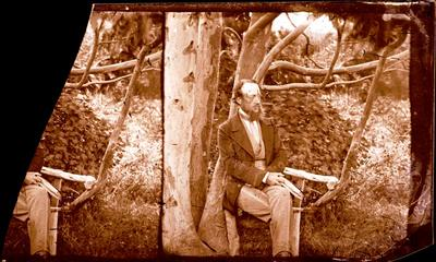 Glass Plate Negative Stereograph Slide: James Edward FitzGerald