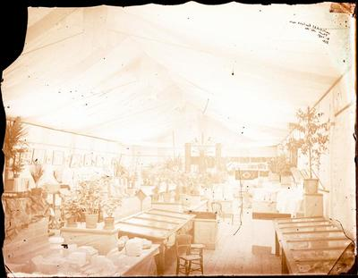 Glass Plate Negative: New Zealand Exhibition