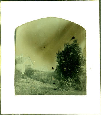 Glass Plate Negative: House of Alfred Charles Barker