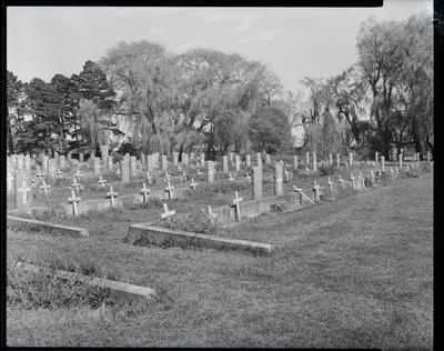 Film Negative: Truth New Zealand Limited, Soldiers graves