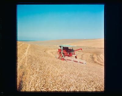 Film Negative: International Harvester Company: Hillside combine