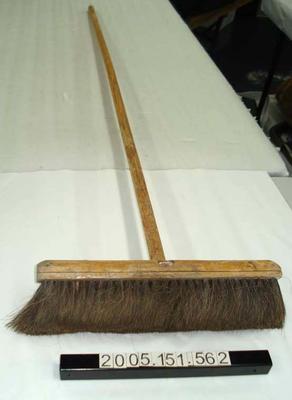 Broom: Horsehair