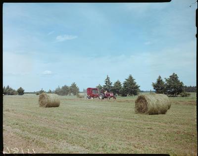 Film Negative: International Harvester Company: farm machinery - hay baler