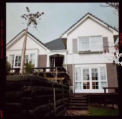 Film Negative: D L Wilson, various houses, front view, exterior