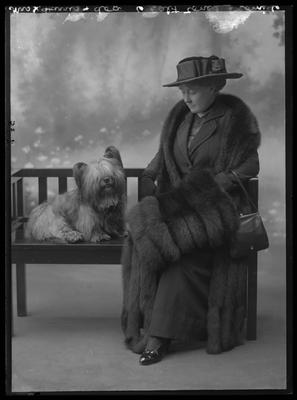 Glass Plate Negative: Mrs J Harris - with dog