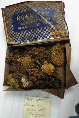 Moss Samples: In Box