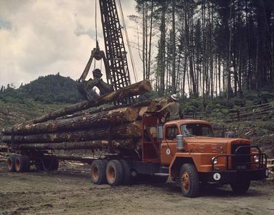Film Negative: International Harvester Company, logging truck