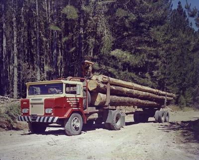 Colour negative: Logging truck
