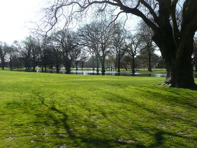 Digital Photograph: Hagley Park