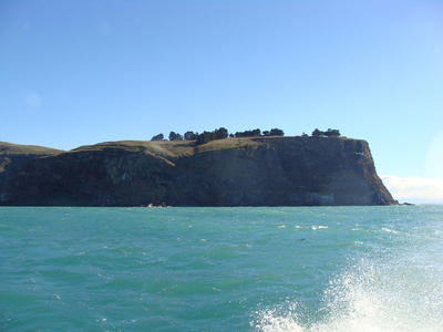 Digital Photograph: Godley Head