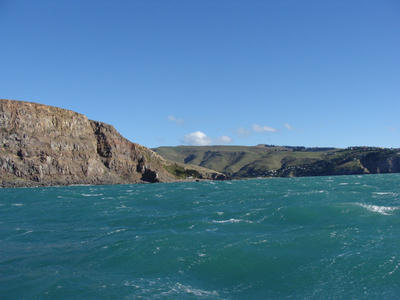 Digital Photograph: Godley Head, Lyttelton Harbour