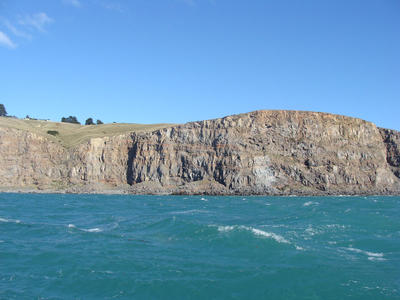 Digital Photograph: Godley Head; 26 May 2013; 2013.17.132