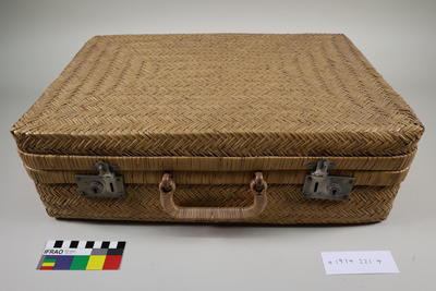 Suitcase: Cane
