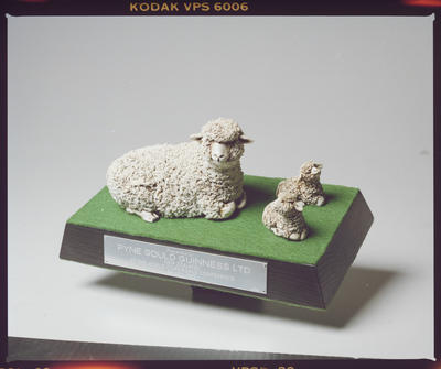 Negative: Pyne Gould Guinness Sheep Statue