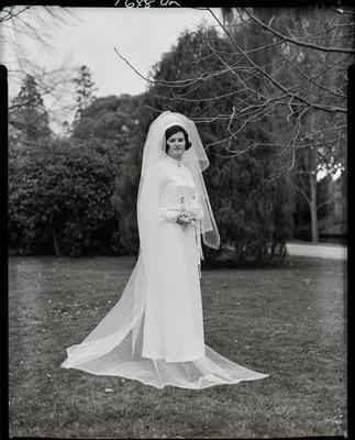 Film negative: Robinson and Wilson wedding, bride