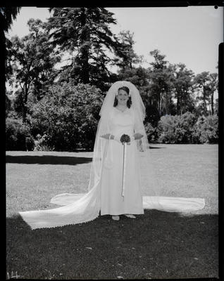 Film negative: Stevenson and Currie wedding, bride