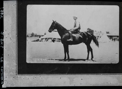 Film negative: Mr J Stafford, horse and rider