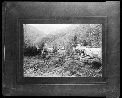 Film negative: Lyell, West Coast scene
