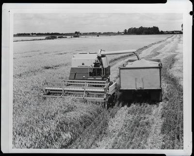 Film negative: International Harvester Company: header