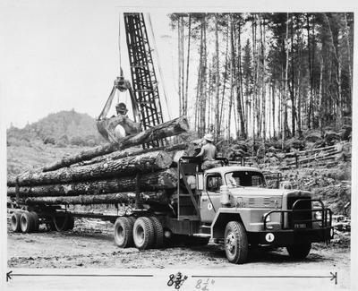 Film negative: International Harvester Company: logging truck