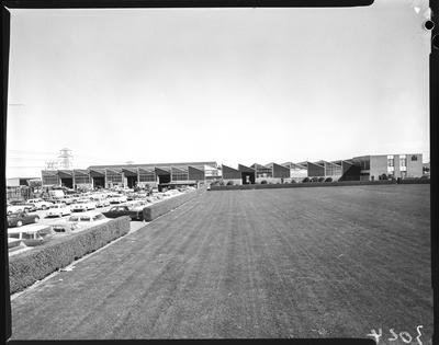 Film negative: International Harvester Company: exterior views of building, for extensions