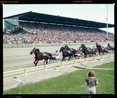 Negative: New Zealand Trotting Cup 1984