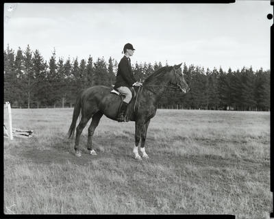 Film negative: Mr R Cairns, horse jumping