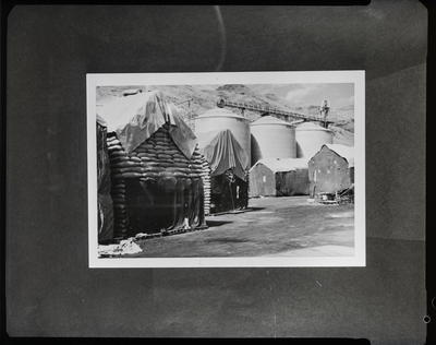 Film negative: A M Bisley and Company, grain silos and stacks