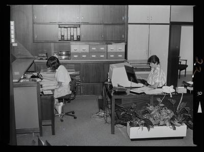 Negative: Wareham & Associates  Office Interior