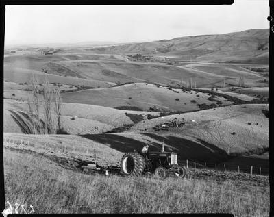 Film negative: Landscape view