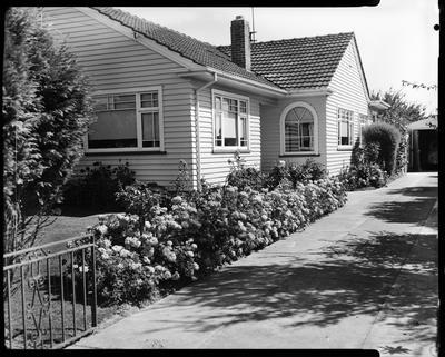 Film negative: Mr Blackie, house