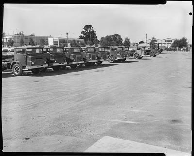 Film negative: International Harvester Company: yard and crane bay