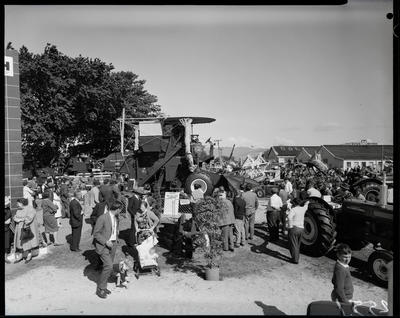 Film negative: International Harvester Company: stand at A and P Show