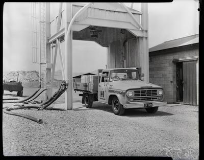 Film negative: International Harvester Company: d-line trucks