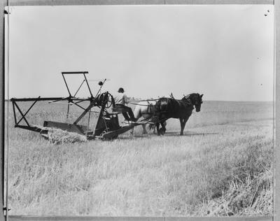 Film negative: International Harvester Company: old tractor